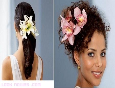 Flores para peinados