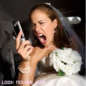 Novias antes de la boda