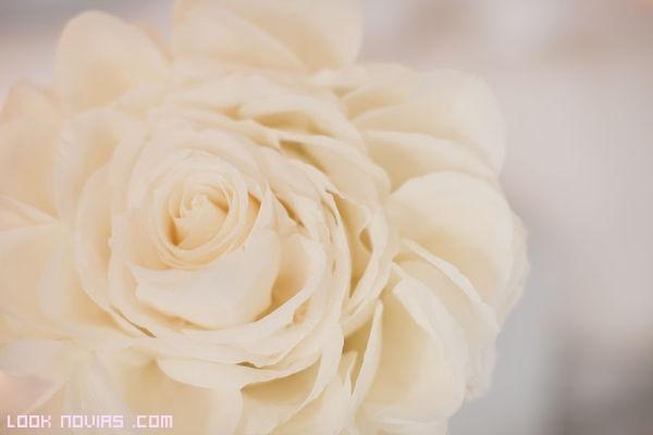 rosas blancas para novias modernas