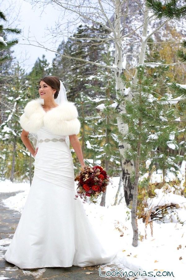 fotos de novias en invierno